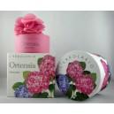 Profumo con fiore 100 ml - Ortensia