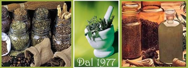 dal 1977 sosteniamo le virtù delle erbe