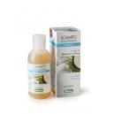 Shampoo zucchero e cocco forfora