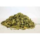 Betulla foglie tagl. tisana ,Betulla pendula Roth(Betulla alba L.)
