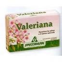 Valeriana - Specchiasol